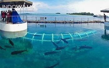 Wisata Pulau Tidung Lewat Ancol